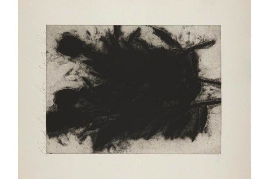 Donald Sultan - Black Rose (1 of 3), 1989