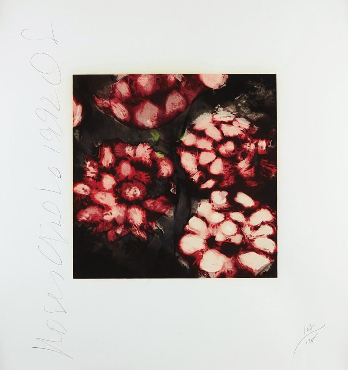 Donald Sultan-Roses-1992