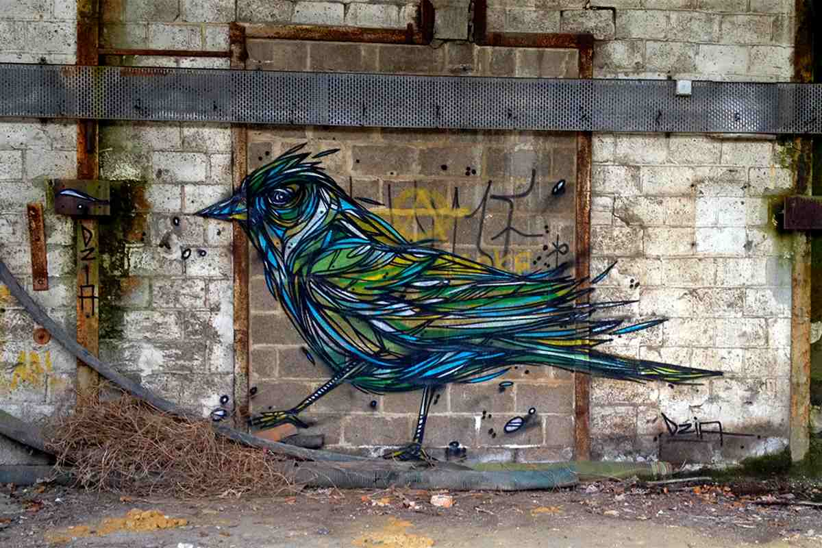 Street art bird murals