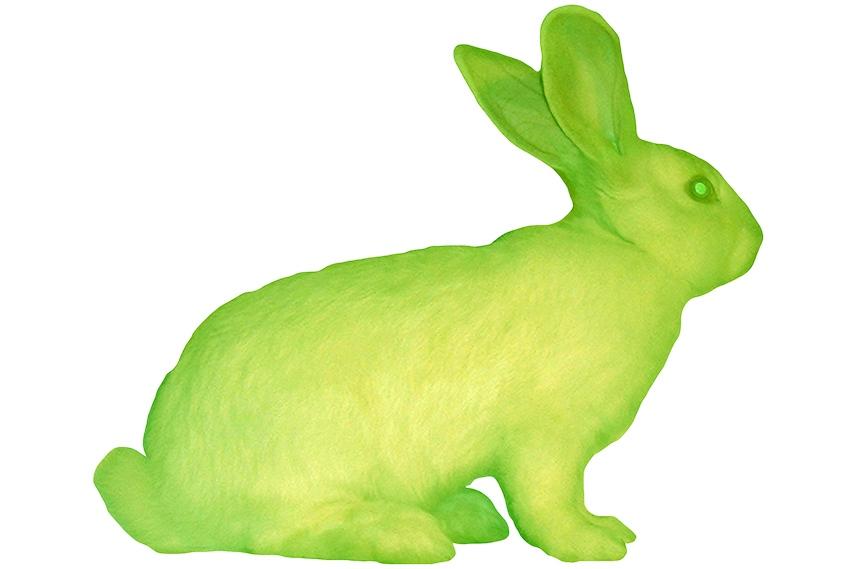 Eduardo Kac - GFP Bunny, 2000