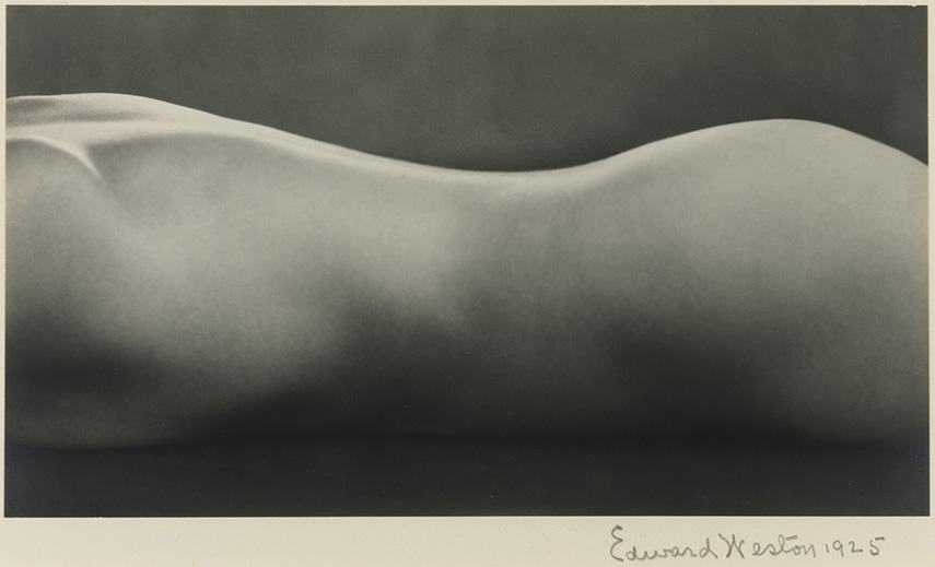Edward Weston - Nude, 1925