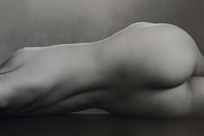 Nude (40N), 1925. Photograph by Edward Weston