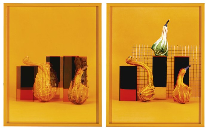 Elad Lassry-Gourdes A; Gourdes B-2011