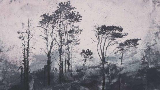 Elizabeth Magill - Parlous Land (detail) - 2006
