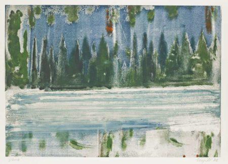 Elizabeth Magill-Venice Mono 48-2008