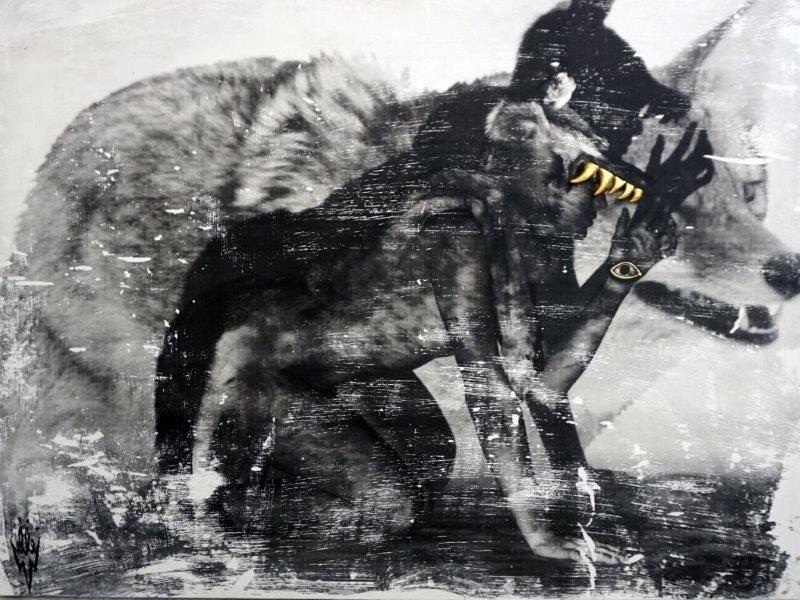 Elle-Koyote-2014