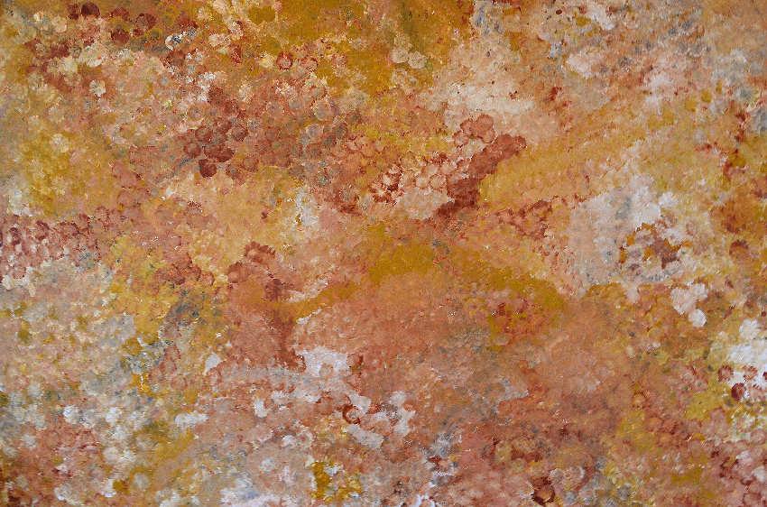 Emily Kame Kngwarreye - Wild Flower Dreaming, kame was an aboriginal artist born in aboriginal utopia in australia, whose works were shown in national exhibition in sydney gallery and museum