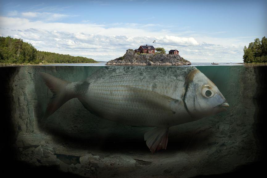 Erik Johansson - Fishy Island, 2009