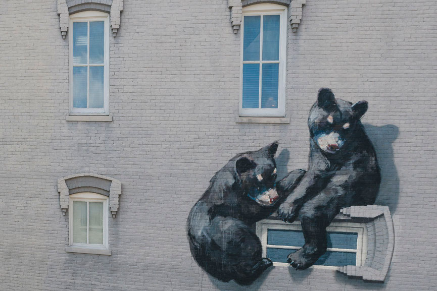 Ernest Zacharevic - Black Bear Cubs