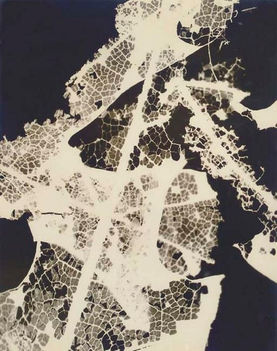 Eva Hesse-Untitled-1958