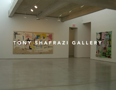 TONY SHAFRAZI GALLERY New York