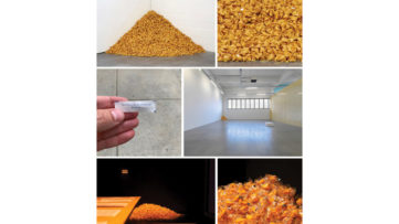 Felix Gonzalez-Torres Untitled (Fortune Cookie Corner) 1990