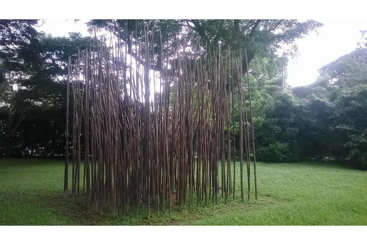 François Roche - Bamboo Bonsai-ing. Singapore Biennale 2013