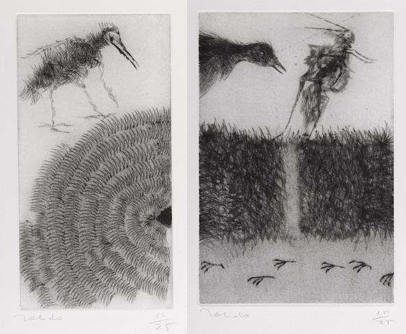 Francisco Toledo-Trece Maneras de Mirar un Mirlo (Thirteen Ways of Looking at a Blackbird)-1981