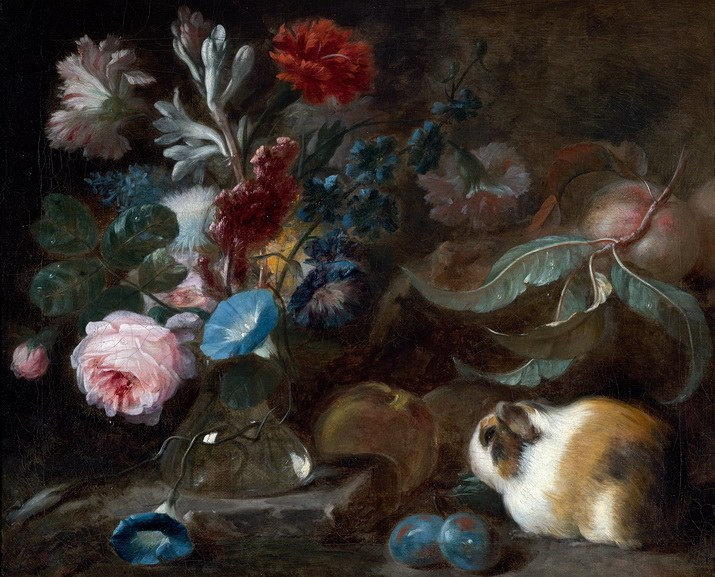 Franz Werner Temm – Still life with Guinea pig, flowers and fruit