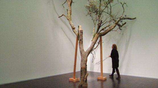 Gabriela Albergaria - Instalation view - Image via pinterest