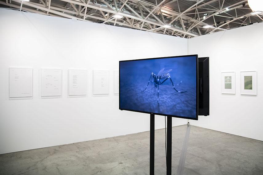 Galleria Umberto di Marino at Artissima 2018