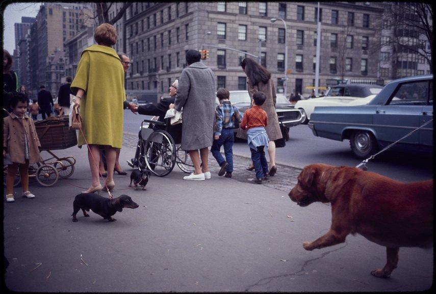 Garry Winogrand - Untitled New York