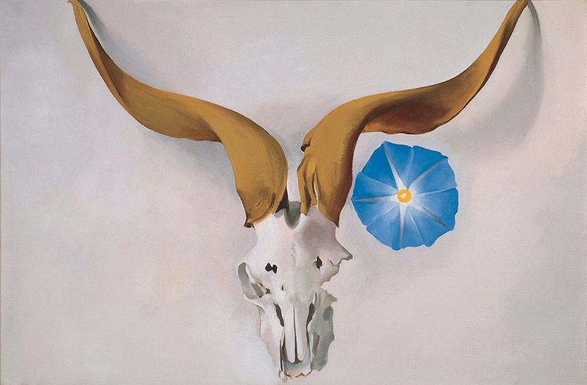 Georgia Keeffe  o'keeffe museum  - Rams Head, Blue Morning Glory, 1938