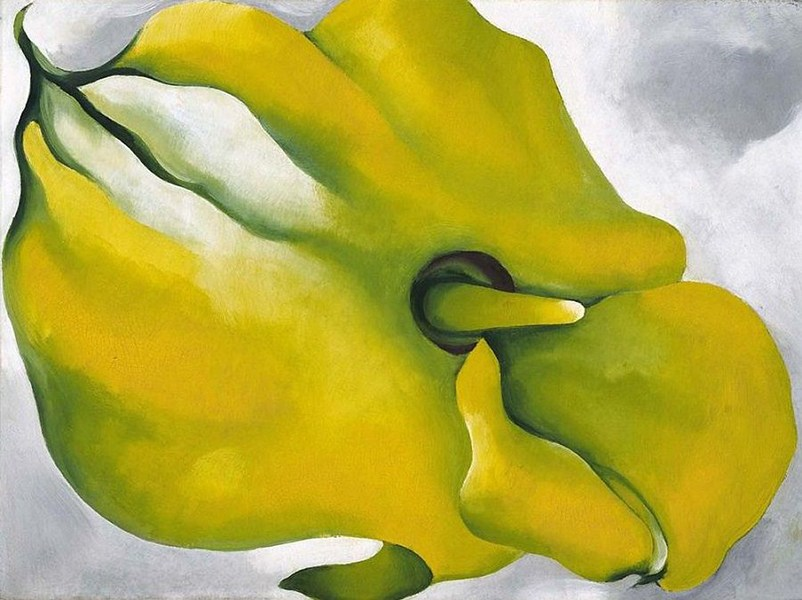 Georgia O'Keeffe - Yellow Calla, 1926