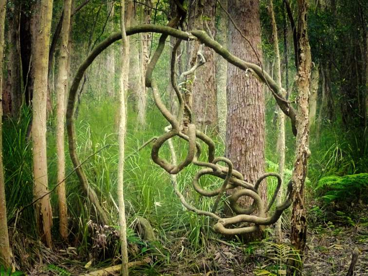 Gerry Joe Weise - Environmental Squiggly Art, 2015