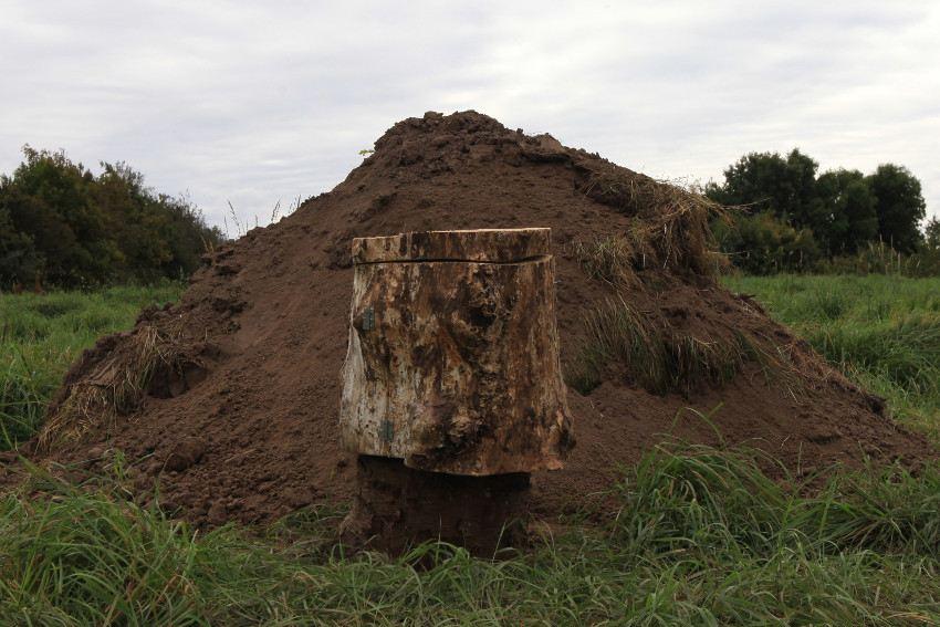 Gola Hundun - Yggdrasil Cromlech (detail 4), Vra, Denmark, 2016