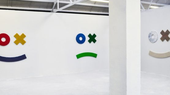 Grear Patterson - Duck Test, 2014 (Installation View) - Copyright Ellis King Gallery