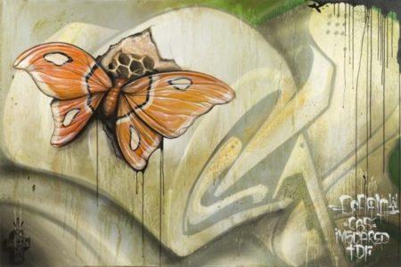 Greg Simkins-Moth-2011