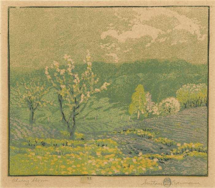 Gustave Baumann-Cherry Bloom-1917