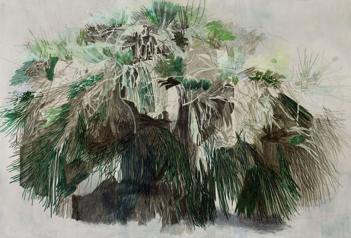 Halley Cheng - A Tree In The Jorden Valley Park, Main Entrance, 2014