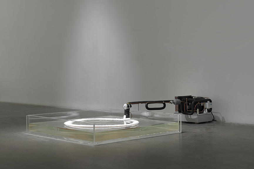 Hans Haacke New Museum Exhibition 2019
