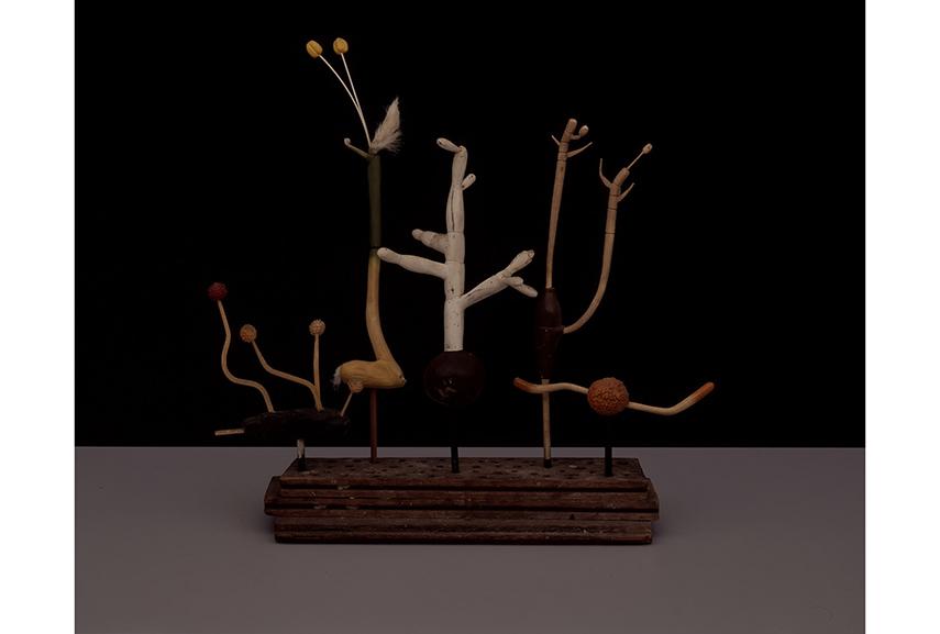 Hans Hansen - o.T. (Plant Models), 2007 1