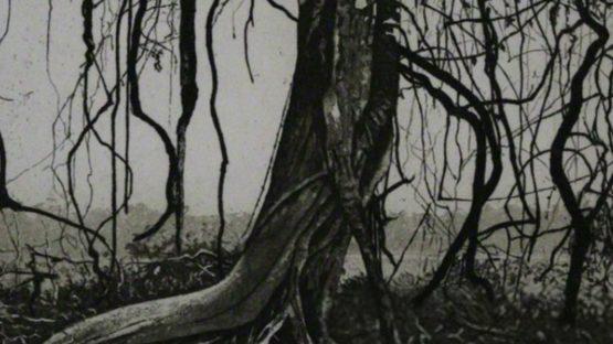 Herbert Jäger - Knorriger Baum Gnarled Tree - Image via wikipedia