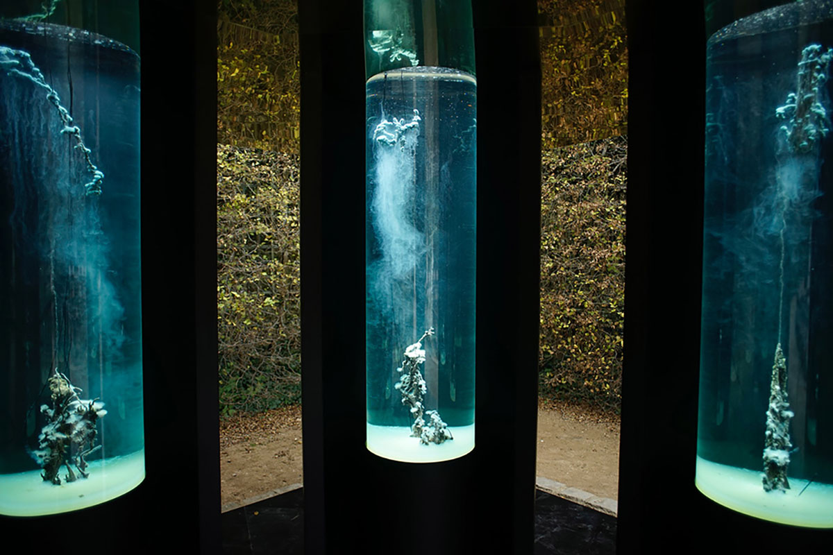 Hicham Berrada, Installation view, Palace of Versailles, Versailles, France, 2017