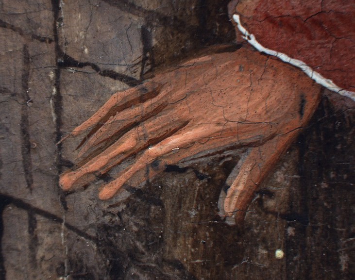 Hieronymus Bosch - The Adoration of the Magi detail - photomicrograph of background figure's hand
