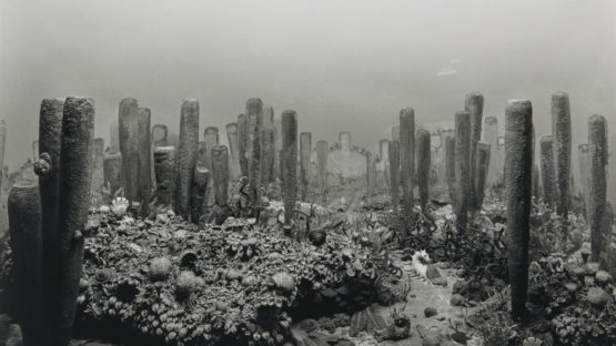Hiroshi Sugimoto Photographs: The Fossilization of Time
