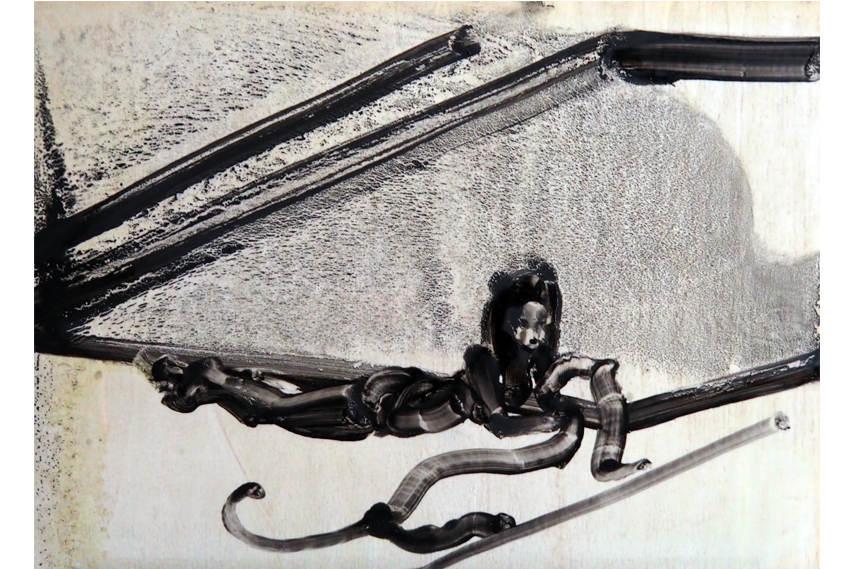 Ilona Szalay - Panther
