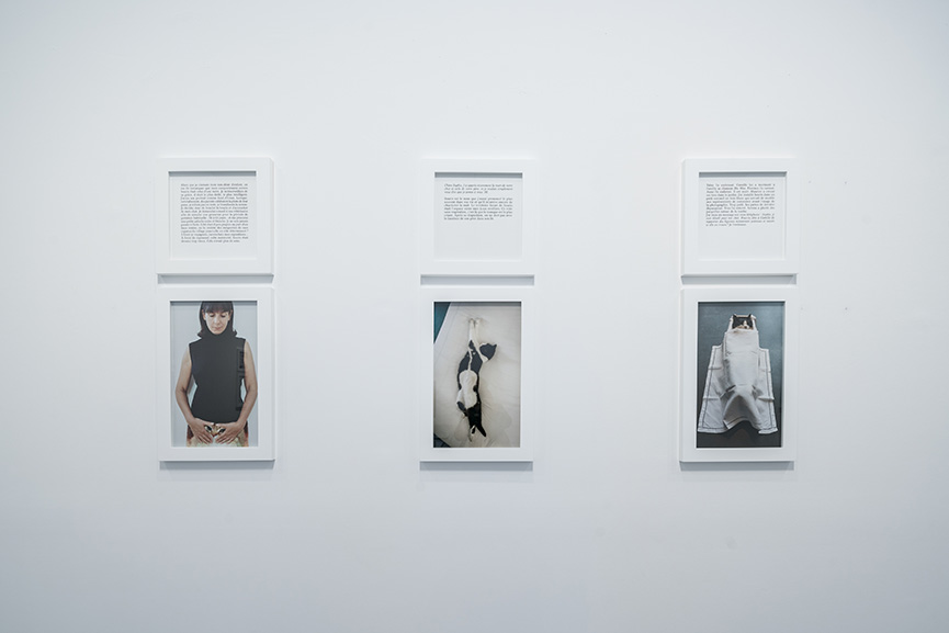 The Summer of Sophie Calle and her Dead End at Chateau La
