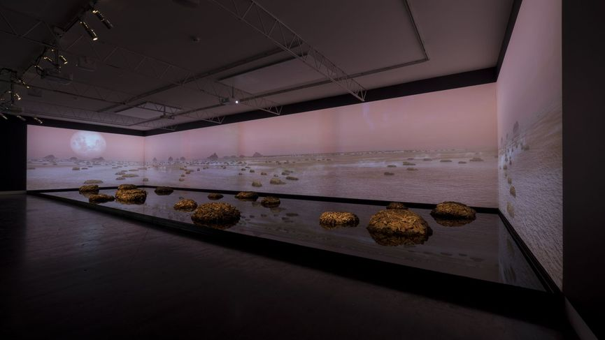 "Installation view of ""Living Rocks: A Fragment of the Universe"" by artists James Darling and Lesley Forwood during the international Biennale exhibition"