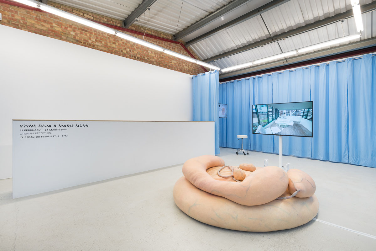 Synthetic Seduction, Installation View, 2018_ by Annka Kultys