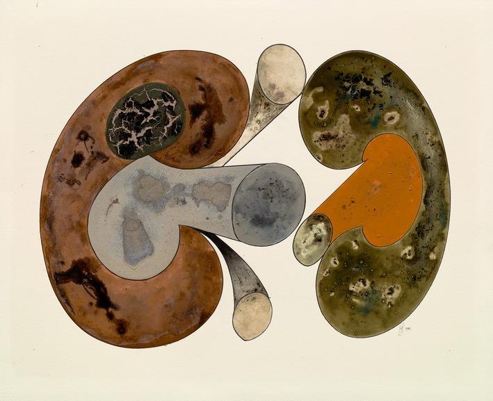 Irving Penn – Aging Mushrooms