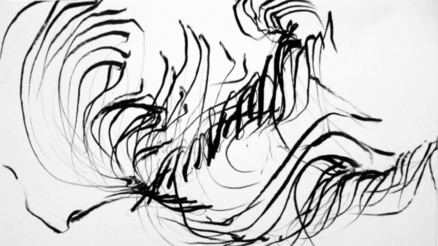 Jaanika Peerna - An unnamed drawing from her Dance Notations Series - Photo Credits Baltic Reports