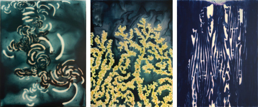 Jaq Chartier - Cluster w-BG4, 2013 - Golden Coral, 2013 - Sample w-Blue 6b, 2013