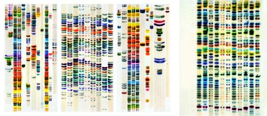 Jaq Chartier - Large Chart (Full Spectrum), 2015 - Tests w-11 Whites, 2015