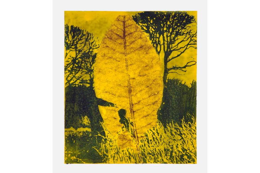 Jean-Luc Guin Amant - Leaf V