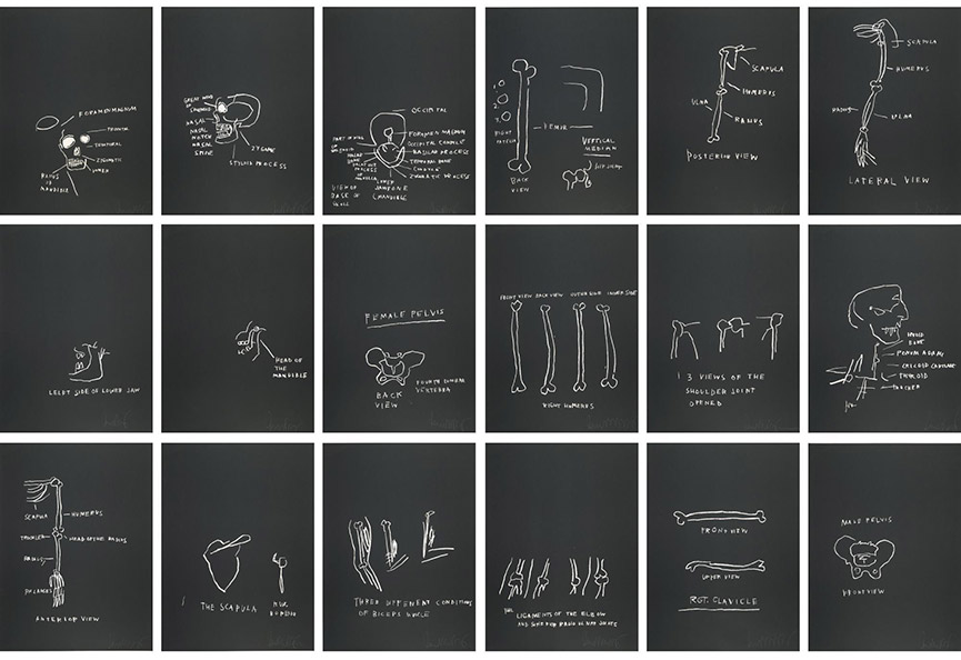 Jean-Michel Basquiat-Anatomy (Full Set)-1982