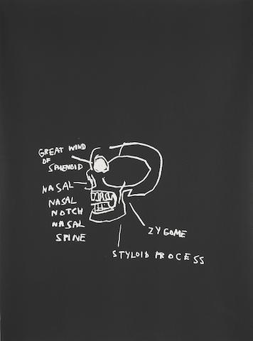 Jean-Michel Basquiat-Anatomy (Great Wind of Sphenoid)-1982