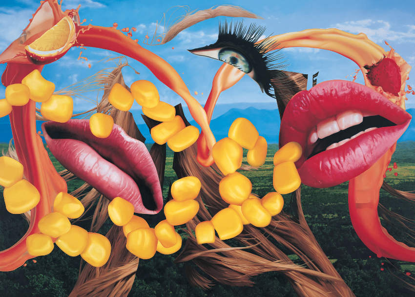 Jeff Koons - Lips, 2000, privacy video gallery