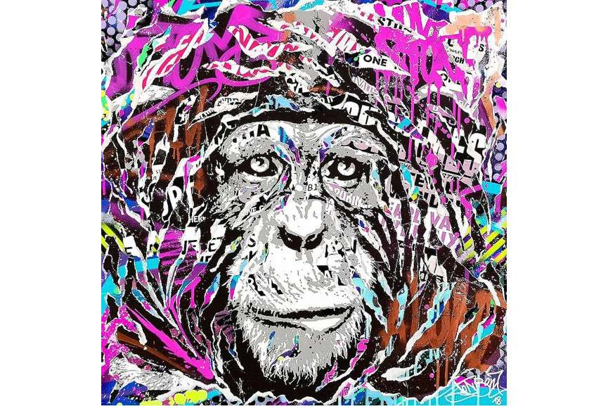 Jo Di Bona - Print Splash Magic Monkey