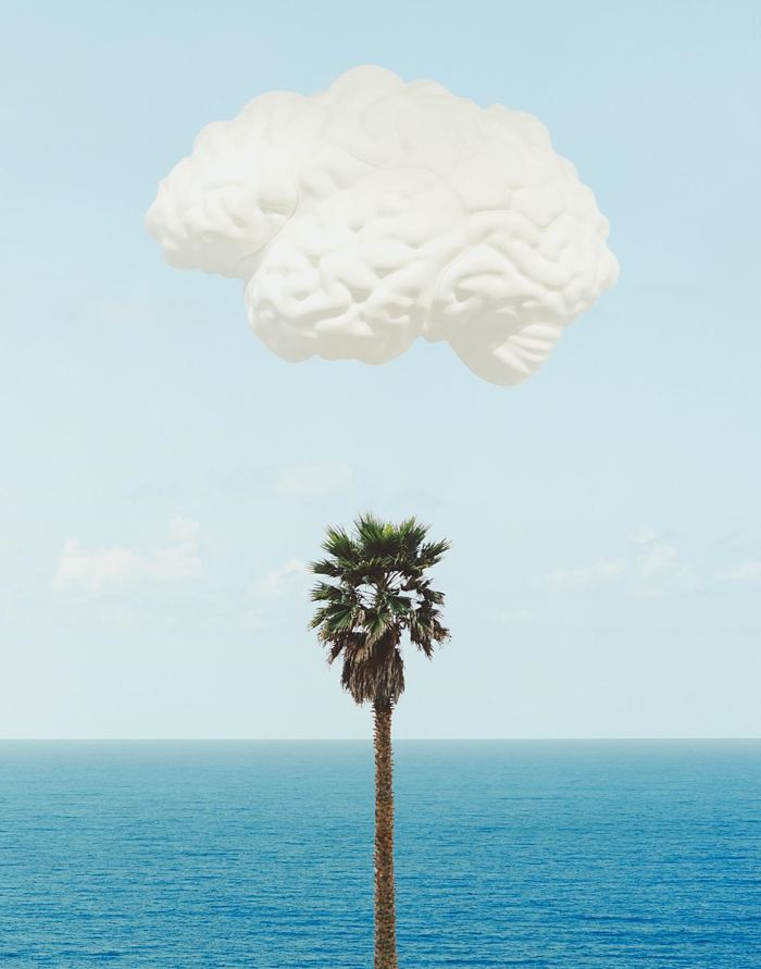 John Baldessari-Brain/Cloud (With Seascape and Palm Tree)-2009